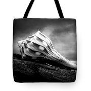 Seashell Without The Sea Tote Bag