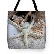 Seashells And Driftwood 2 Tote Bag