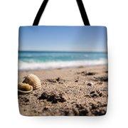 Seashells At The Shore Tote Bag