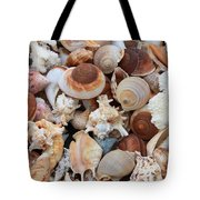 Seashells - Vertical Tote Bag