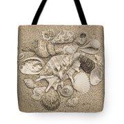 Seashells Collection Drawing Tote Bag