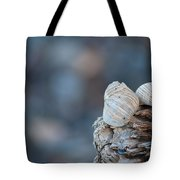 Seashells On Driftwood  Tote Bag