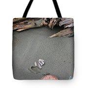 Seashells On The Seashore II Tote Bag