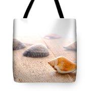 Seashells On Wood Dock Tote Bag