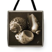 Seashells Spectacular No 1 Tote Bag by Ben and Raisa Gertsberg