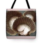 Seashells Spectacular No 22 Tote Bag by Ben and Raisa Gertsberg