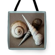 Seashells Spectacular No 24 Tote Bag by Ben and Raisa Gertsberg