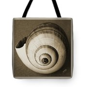 Seashells Spectacular No 25 Tote Bag