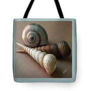 Seashells Spectacular No 29  Tote Bag by Ben and Raisa Gertsberg