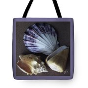 Seashells Spectacular No 30 Tote Bag