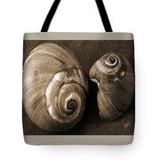 Seashells Spectacular No 6 Tote Bag