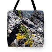 Seaside Goldenrod 1 Tote Bag
