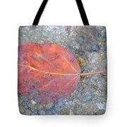 Seasonal Signage Tote Bag