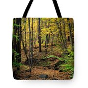 Seasons Change Tote Bag