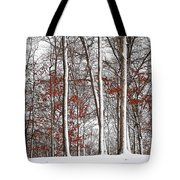 Seasons Converge Tote Bag