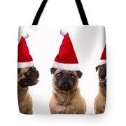 Seasons Greetings Christmas Caroling Pug Dogs Wearing Santa Claus Hats Tote Bag