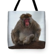 Seated Macaque Snow Monkey Tote Bag