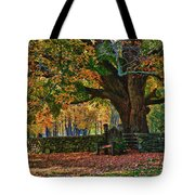 Seated Under The Fall Colors Tote Bag