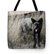Seattle Silver Fox Tote Bag