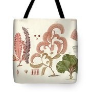 Seaweed Different Kinds Tote Bag