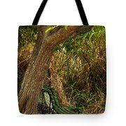 Secluded Park Benches Tote Bag by Jess Kraft