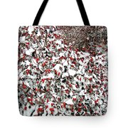 Secluded Winter Haven Tote Bag