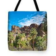 Second Largest Stand Of Fan Palms In The World In Andreas Canyon In Indian Canyons-ca Tote Bag