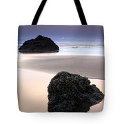 Second Rock From The Sun Tote Bag