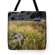 Second Thoughts Tote Bag