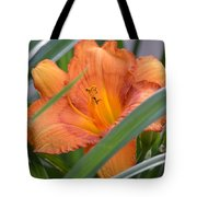 Secret Sunset - Lily Tote Bag