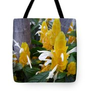 Secrets Of The Marching Shrimps Tote Bag
