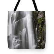 Section Of The Falls Tote Bag