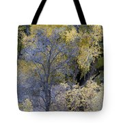 Sedona Fall Color Tote Bag