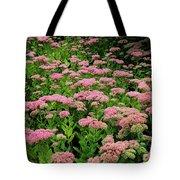 Sedum Garden Tote Bag