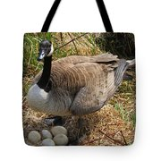 See My Eggs Tote Bag