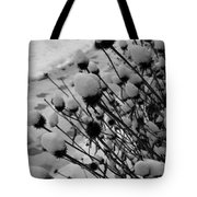 Seedheads Tote Bag