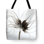 Seeds Tote Bag by Anne Gilbert