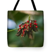 Seeds Of A Tropical Plant India Tote Bag