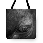 Seeing Into The Soul Tote Bag