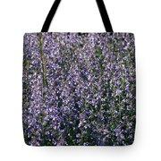Seeing Lavender Tote Bag