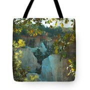 Seeing Through The Trees Tote Bag