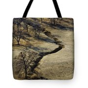 Seeking Shade Tote Bag