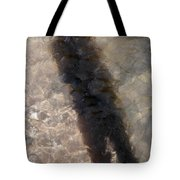 Selfportrait Of A Shadow Tote Bag