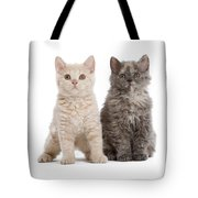 Selkirk Rex Kittens Tote Bag