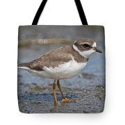 Semi-palmated Plover Pictures 59 Tote Bag
