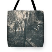 Sending Light And Warmth To You Tote Bag