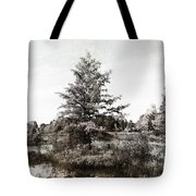 Seney Silver And Chocolate Tote Bag