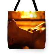 Sensual Photo Of Naked Woman In Front Of Fireplace Tote Bag