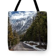 Sentimental Journey Tote Bag