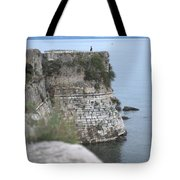 Sentinel On Duty Tote Bag
